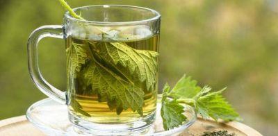 Las 6 bebidas más saludables después del agua