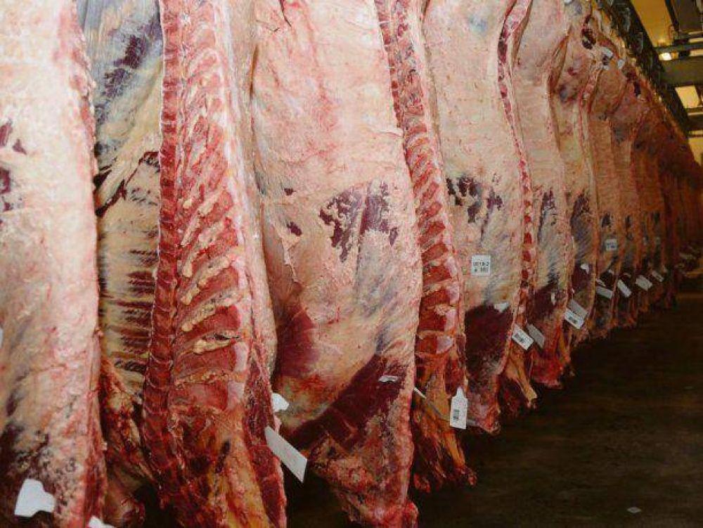 Carne: el sector ganadero ya encendió todas las alarmas