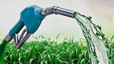 Biocombustibles: Preocupan las consecuencias de un cambio al marco regulatorio
