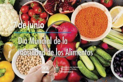 7 de Junio, Día Mundial de la Inocuidad de los Alimentos: INTA AMBA acompaña a productores y productoras hortícolas en la poscosecha