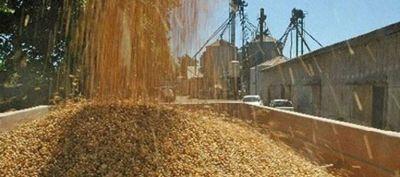 El BCRA suspendió a Extrugreen, cerealera vinculada a Vicentin, por no liquidar divisas