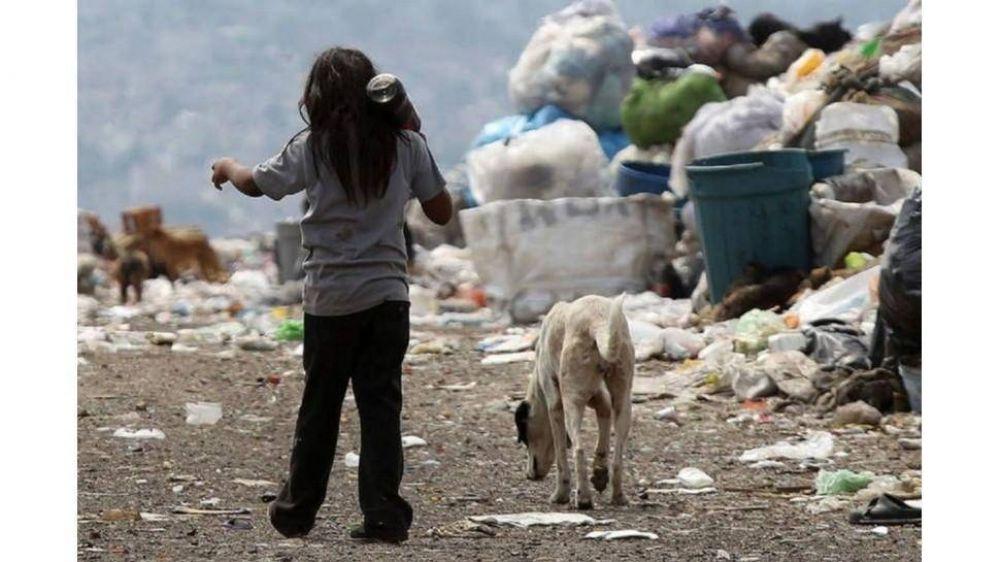 Sin IFE ni Tarjeta Alimentar la pobreza se hubiera