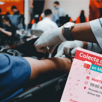 Merlo | Colecta de sangre y toma de muestra