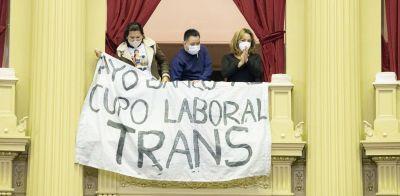 Los 12 dipusindicalistas votaron a favor del proyecto de ley sobre cupo laboral travesti trans que se aprobó y se envió al Senado