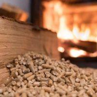 Buscan transformar residuos forestales en material combustible para calefacción