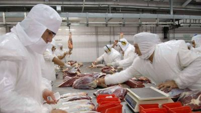 Se prevé retomar las exportaciones de carne vacuna con nuevo esquema