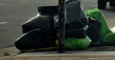 Separación de residuos: piden informes a un año del relanzamiento de la campaña