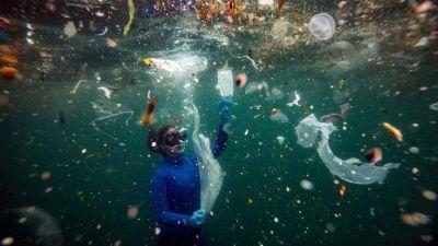 Cuatro productos de plástico constituyen casi la mitad de la basura del océano