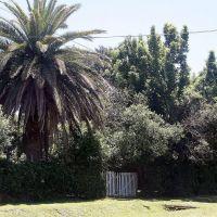 San Vicente: anuncian obras para mejorar sus calles