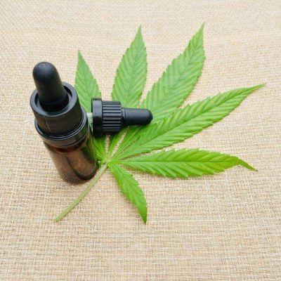 Cannabis medicinal: proponen que Villa María adhiera a la ley