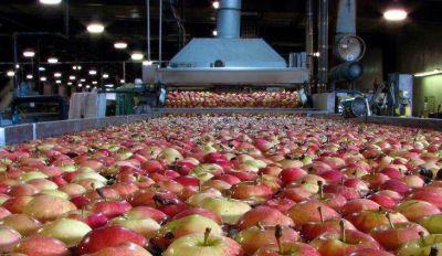 El Gobierno nacional redujo a cero las retenciones a exportaciones agroindustriales de economías regionales