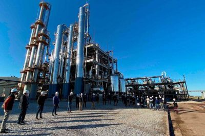 Schiarettistas rechazarán la nueva ley de biocombustibles