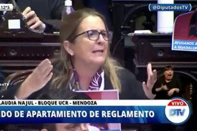 El oficialismo rechazó en Diputados debatir un proyecto para destrabar las negociaciones con Pfizer