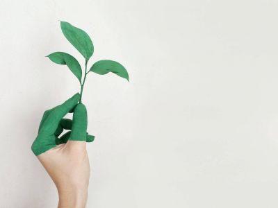 Supply chain: Parc Central de Tarragona impulsa su sostenibilidad
