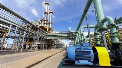 Biocombustibles:cuestionan la discrecionalidad del nuevo esquema