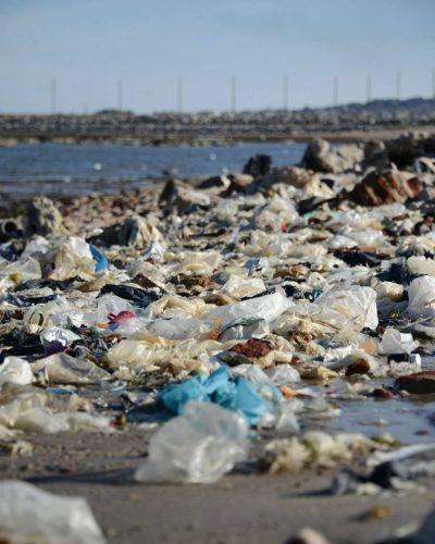 Bolsas plásticas: grandes avances en un camino a profundizar