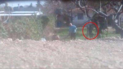 Maltrato animal: Imputaron al ex intendente de Valle Hermoso