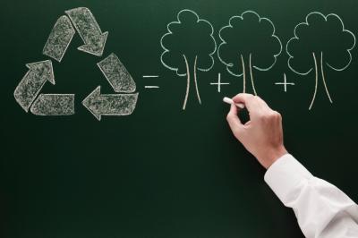 Acciones Sostenibles || Cambios en formación escolar basadas en Sostenibilidad y La Naturaleza