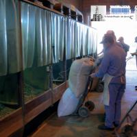 El RENATRE participó de la realización de la nueva ficha técnica de la actividad yerbatera y del cultivo de té en Misiones