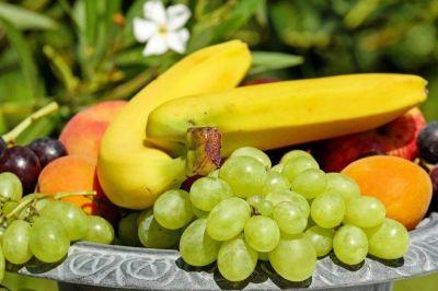 Frutas de Argentina liderará un grupo de trabajo internacional sobre sostenibilidad en la industria agrícola