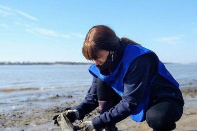 La limpieza de la costa del Paraná