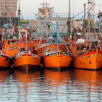 Se hundió un pesquero marplatense y rescataron a sus ocho tripulantes