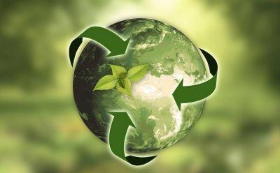 Cambio de paradigma en sustentabilidad de las empresas, un hecho