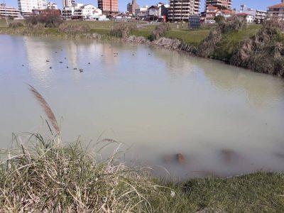 OSSE descartó contaminación en la Laguna de Mogotes: archivaron el expediente
