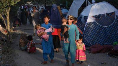 El Papa reza por Afganistán: buscar soluciones en la mesa de diálogo