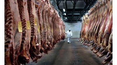Exportaciones de carne: fijan precios de referencia para evitar la subfacturación en ocho cortes