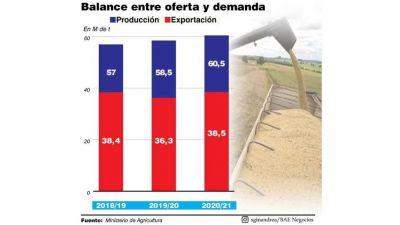 Con campaña récord, el Gobierno no descarta aumentar retenciones al maíz