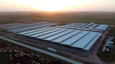 ACUMAR dio a conocer el primer estudio del Mercado Agroganadero de Cañuelas