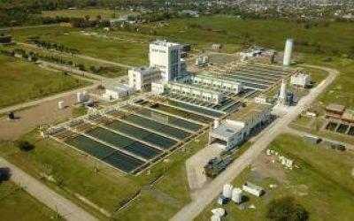 Algas en el Río de la Plata: ABSA baja la producción de agua en la Planta Potabilizadora en Punta Lara