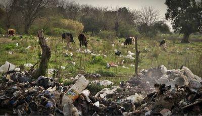 A metros de la siembra agroecológica florece la contaminación y el trabajo de cartoneros