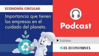 Economía Circular: importancia que tienen las empresas en el cuidado del planeta