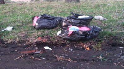 Un geriátrico no sabía qué hacer con los residuos y los tiró en Antártida Argentina