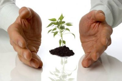 """Sustentabilidad: """"Líderes de triple impacto"""" en acción"""