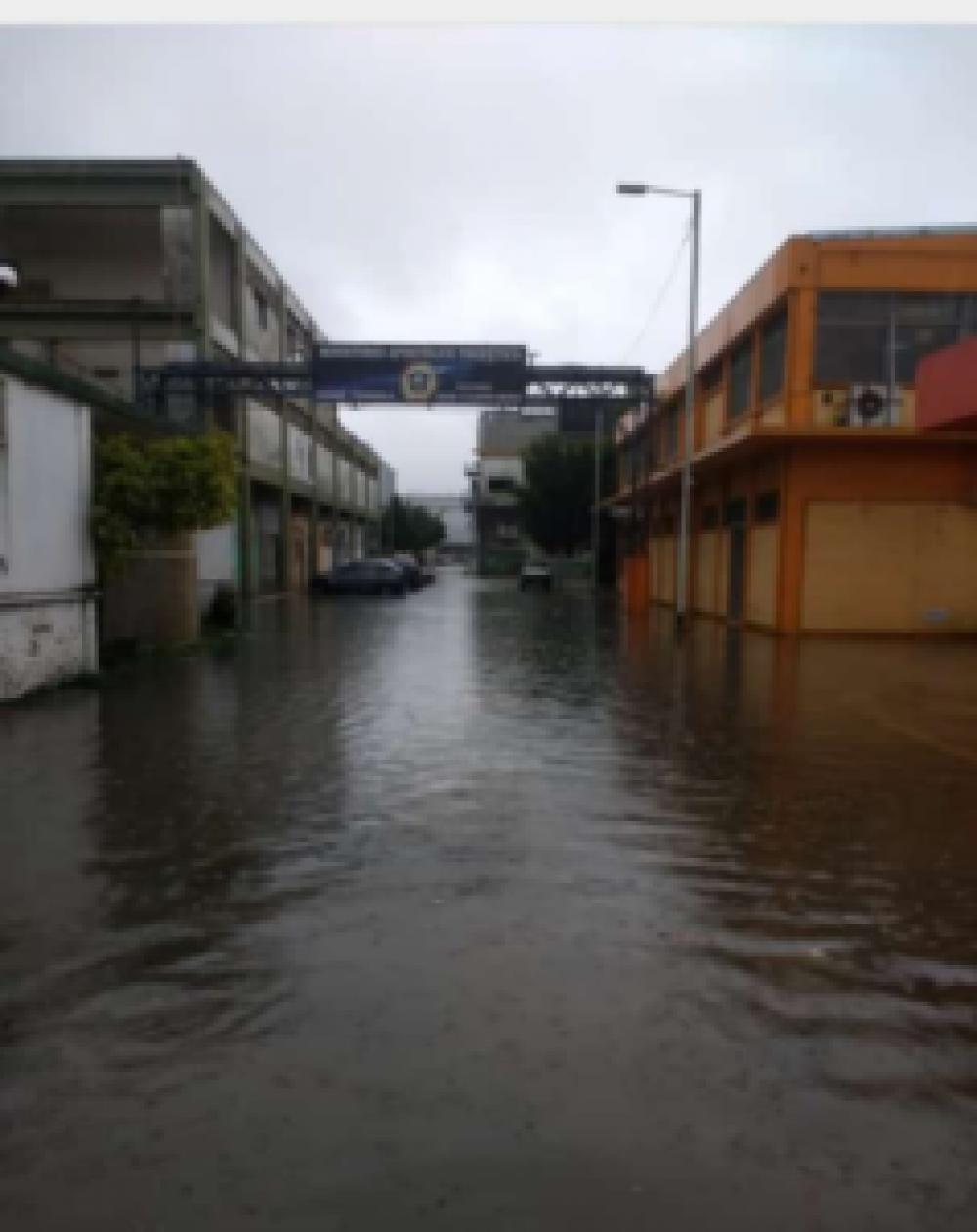 """Graciela Francisconi: """"Las barriadas en Avellaneda son grandes lagunas y Chornobroff no hace nada"""""""