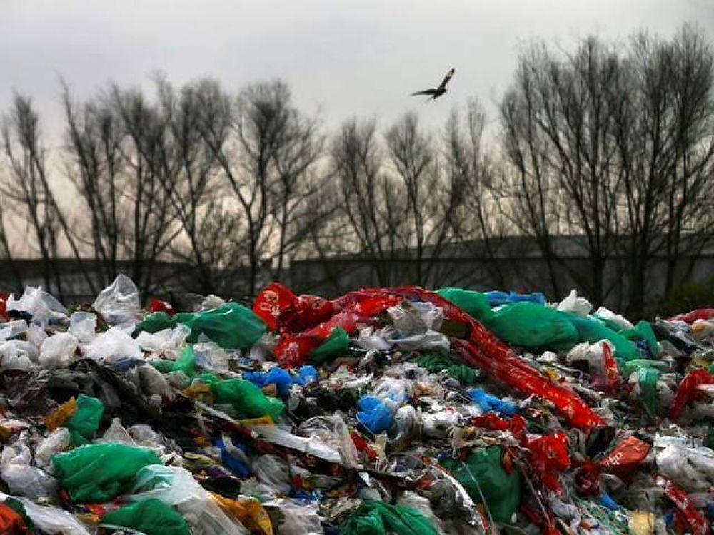 Cómo ahorrar dinero ayudando al ambiente