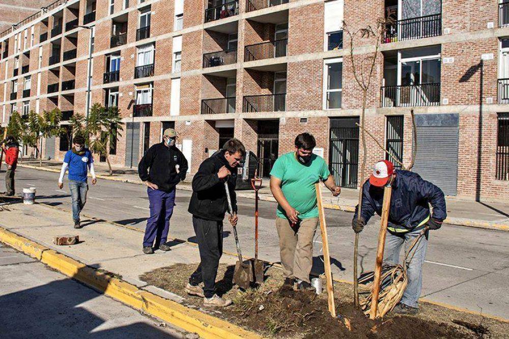 Nuevos barrios porteños. Se abren las calles y llegan más árboles a la ciudad