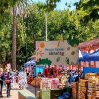Espacio Unzué te invita al mercado de productoras y productores locales