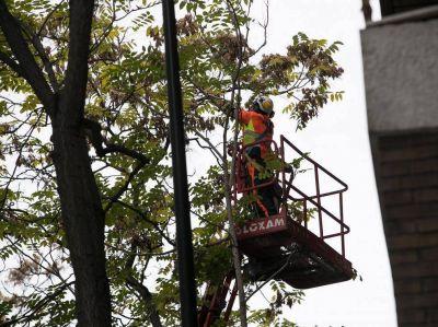 FCC presenta la mejor oferta para el contrato de parques de Zaragoza pero debe justificar la rebaja de precio