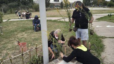 Semana del árbol en Morón: Invitan a plantar árboles en Plaza Goria