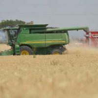 PepsiCo, Trimex y CIMMYT promoveran agricultura sustentable de trigo
