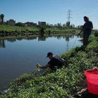 Calidad ambiental: comenzó el monitoreo de macro y microinvertebrados en la Cuenca Matanza Riachuelo