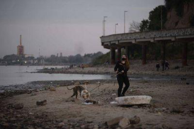 Detectan alarmantes cantidades de residuos plásticos en la costa rosarina
