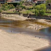 La creciente trajo «mugre», pero el agua es potable