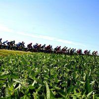 General Rodríguez: vuelve el ciclismo de ruta