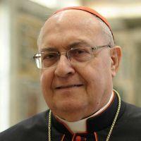 Cardenal encargado de los católicos orientales visitará Siria para llevar la cercanía y solidaridad del Papa