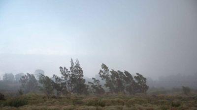 Pronostican viento con ráfagas de hasta 59 kilómetros por hora para esta noche